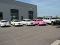 limousine  Hummer wit zwart en roze
